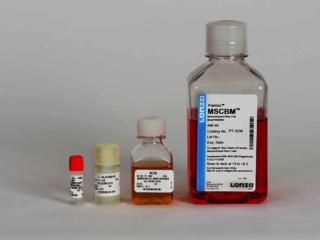 MSCGM<sup>TM</sup> Mesenchymal Stem Cell Growth Medium BulletKit<sup>TM</sup>