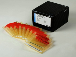PAGEr<sup>TM</sup> EX Gels