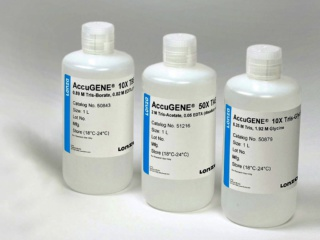AccuGENE<sup>TM</sup> 10X PBS