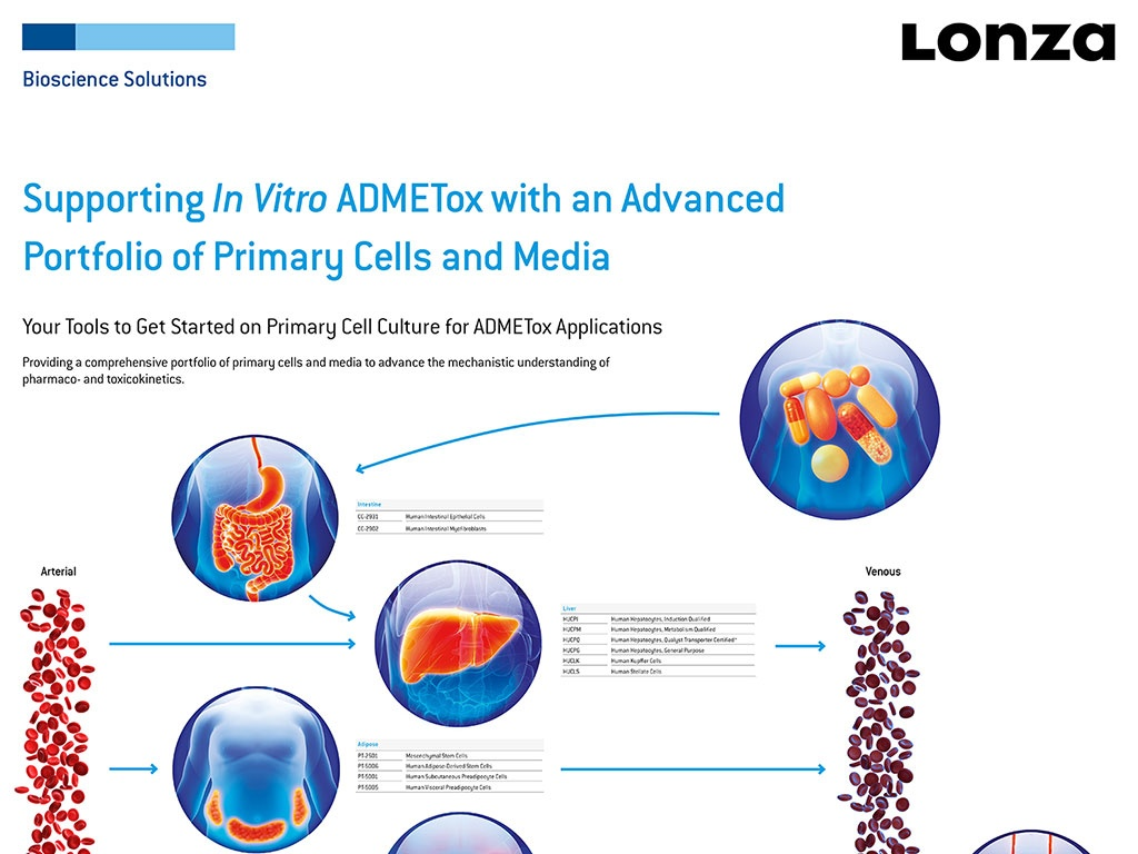 Importance Of Primary Hepatocytes Lonza